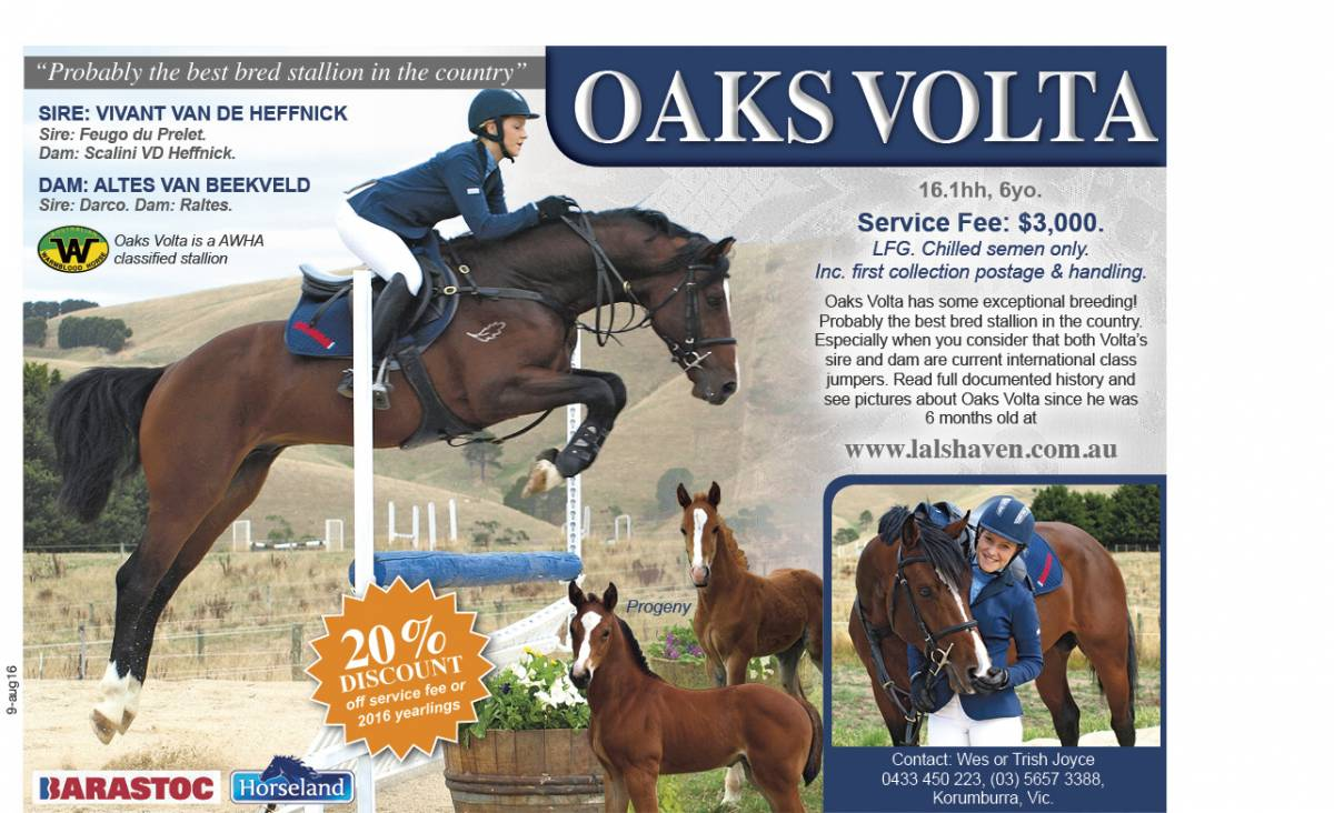 Oaks Volta advertisement 2016