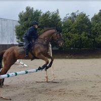 Ebony jumping Yarni
