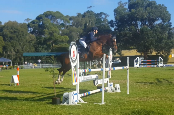 First fence for the jump off Open 1.20m