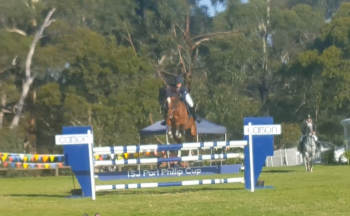Johnny still so strong coming to last fence in jump off Open 1.20m
