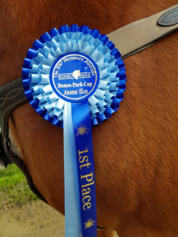 Stunning Rosette one to keep