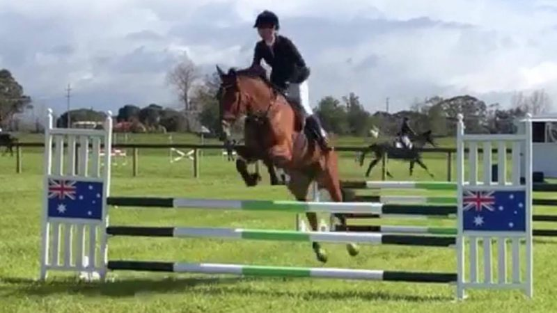 Steph & LH Queenie now named Quintell sure to be a pair to watch in the future