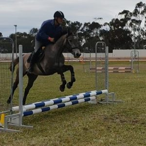 Wes & LH Queenbee having a jump in her first course
