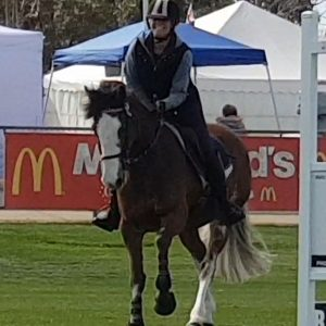 LH Lily Puss & I in action at Swan Hill Show