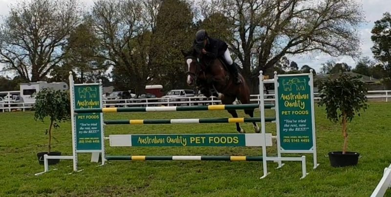 First fence in Open 1.30m